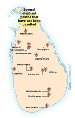 image 412b733238 in sri lankan news