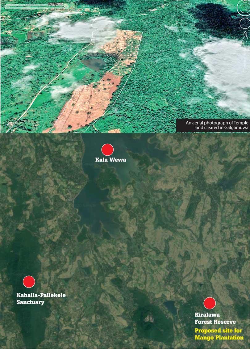 image fc87489094 in sri lankan news