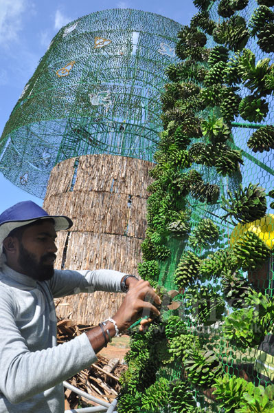 the worlds tallest christmas tree is seen being constructed at the galle face green the work resumed yesterday after being put on hold for two weeks - Worlds Tallest Christmas Tree