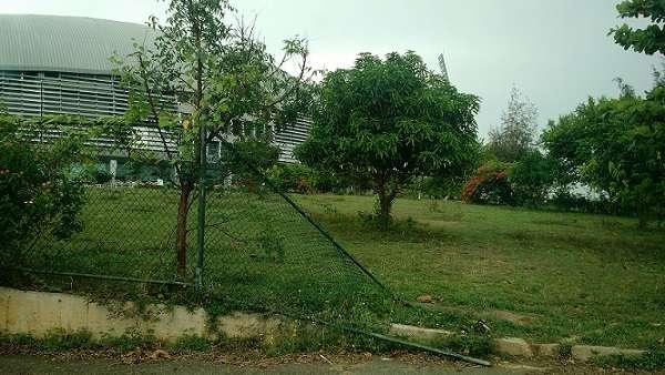 image 1525015483 b7a6036a37 in sri lankan news