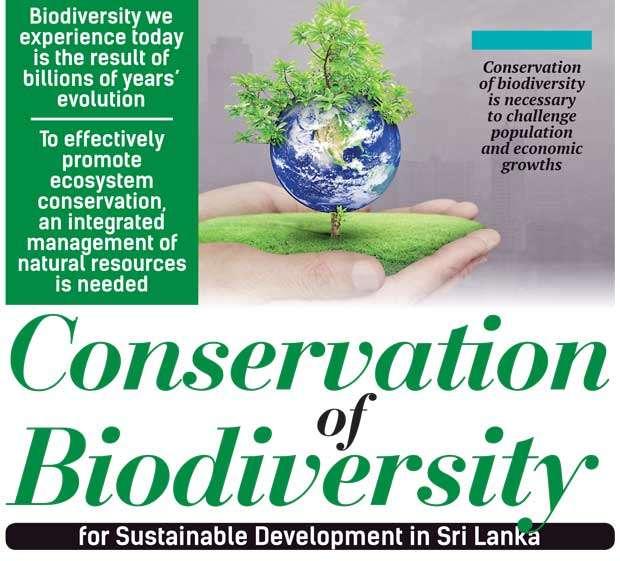 biodiversity paper articles