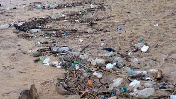 image 1534206780 bb37a4b993 in sri lankan news