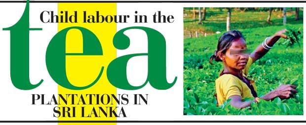 Solutions for Child Labor in Sri Lanka